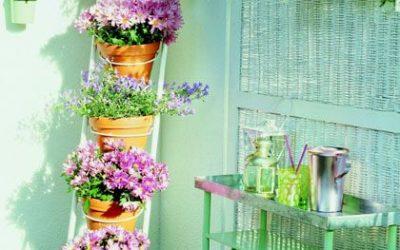 Preparando-nuestro-jardín-para-el-invierno2-68677_400x250 HOME